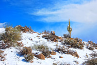Snow Across the High Desert V